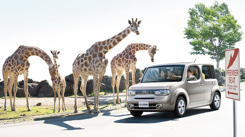 Nissan Cube Z12 Ad 4