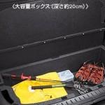 Nissan Cube Z12 luggage underboard