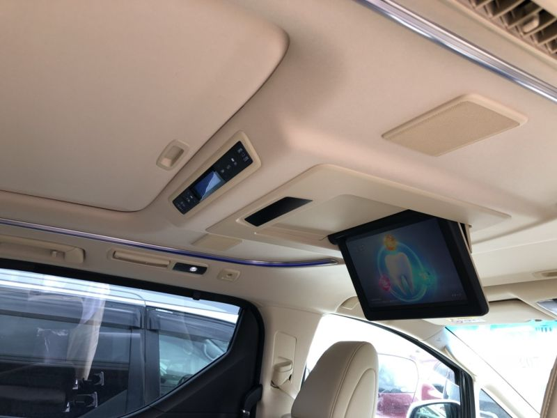 2015 Toyota Alphard Hybrid Executive Lounge roof lining