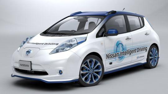 Nissan Leaf import autonomous drive